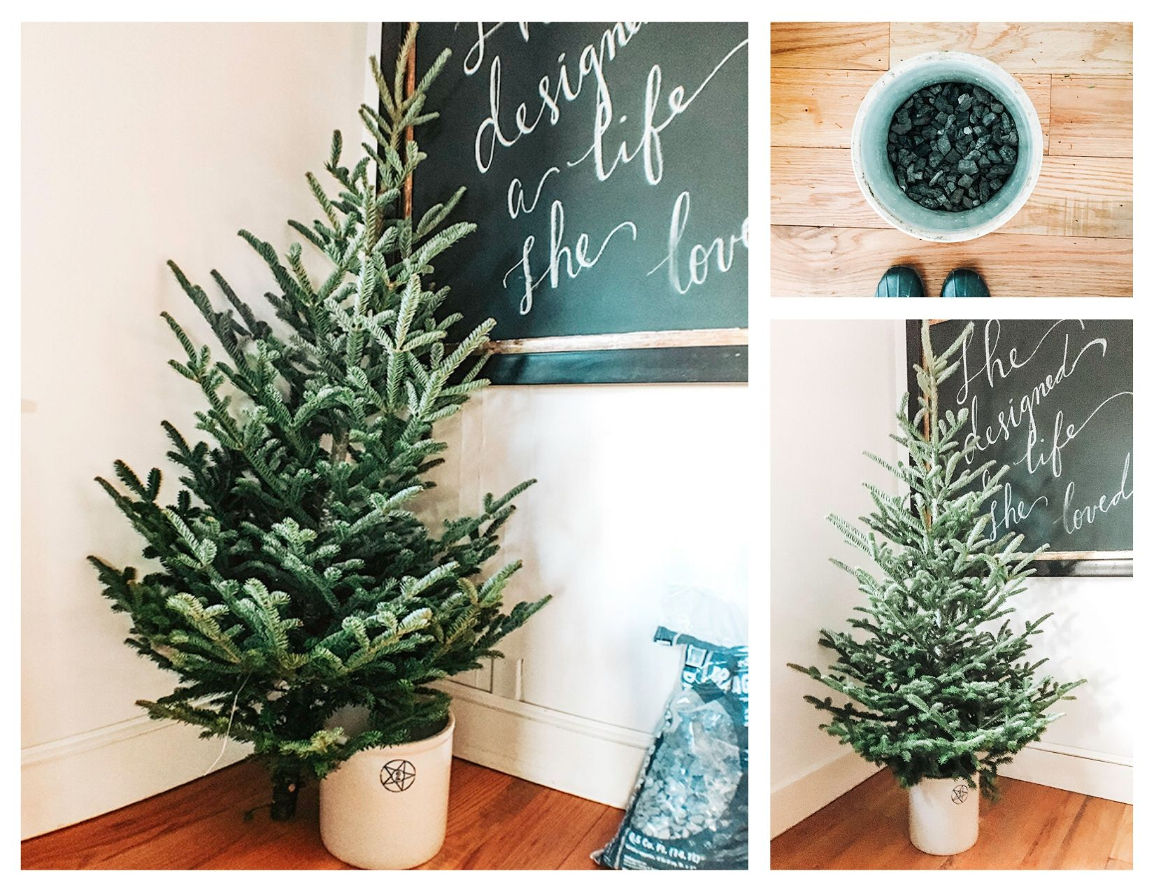 How To Make A Christmas Tree Stand From A Bucket Or Basket Em Creative Co